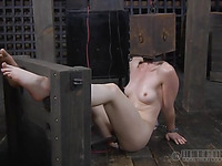 Head in cage is punishment for slutty chick